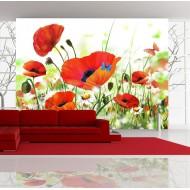 Papier peint  Country poppies