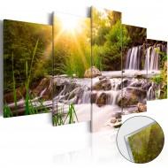 Tableau sur verre acrylique  Forest Waterfall [Glass]