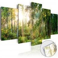 Tableau sur verre acrylique  Green Sanctuary [Glass]