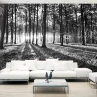 Papier peint  Grey Wilderness