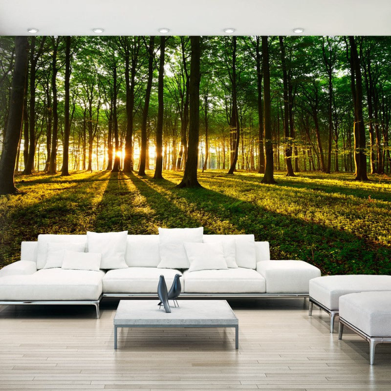 papier peint xxl mystical morning ii beaux meubles pas chers. Black Bedroom Furniture Sets. Home Design Ideas