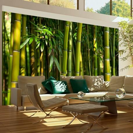 Papier peint  Forêt de bambous asiatique