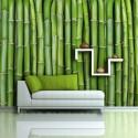 Papier peint - Mur vert bambou