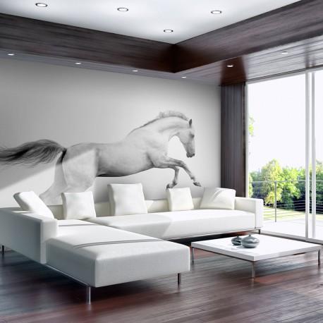 Papier peint  White gallop