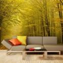Papier peint - Route dans la forêt d'automne