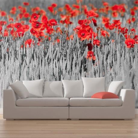 Papier peint  Coquelicots rouge sur champ noir et blanc