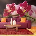 Papier peint - Branche d'orchidée se reflétant dans l'eau