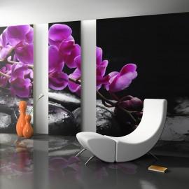 Papier peint - Moment de détente : orchidée et pierres zen