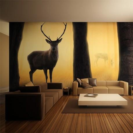 Papier peint XXL  Deer in his natural habitat