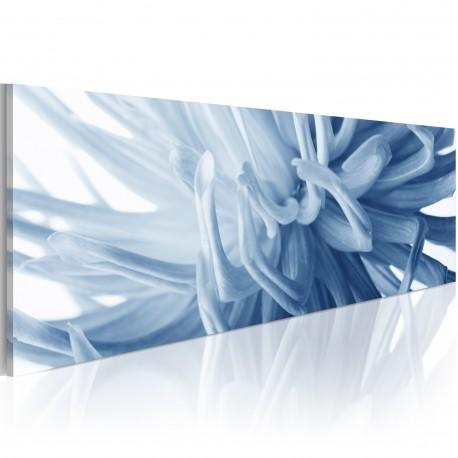 Tableau  Canvas print – Flover petals