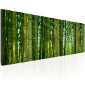 Tableau - Canvas print - Bamboo in the sunshine