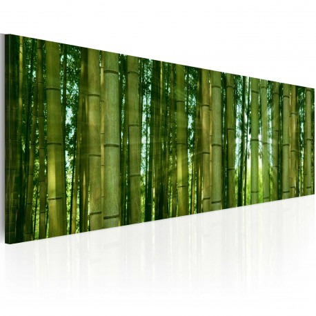 Tableau  Canvas print  Bamboo in the sunshine