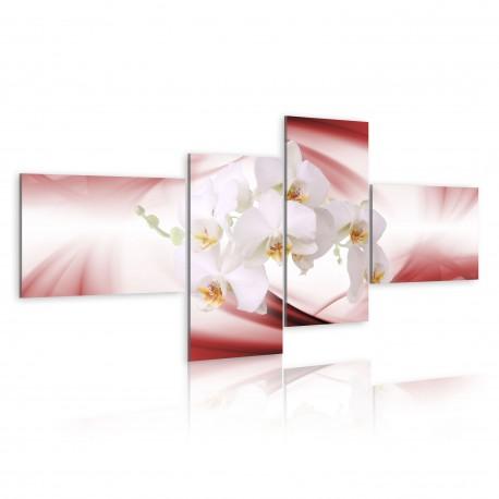 Tableau  Orchidée de couleur rose