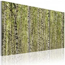Tableau - Forêt de bouleaux