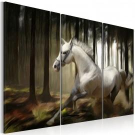 Tableau - Cheval blanc parmis les arbres