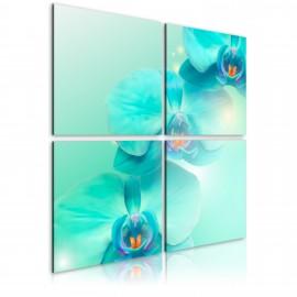 Tableau - Orchidées d'azur