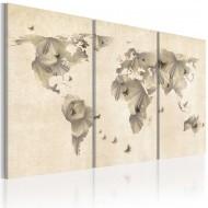 Tableau  Atlas des papillons  triptyque