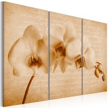Tableau  orchidée (vintage)