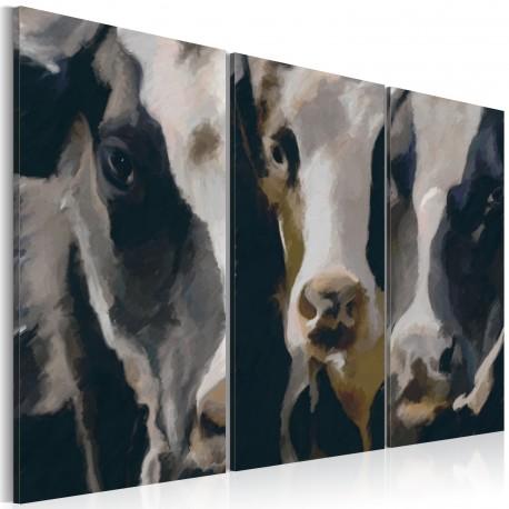 Tableau  Piebald cow
