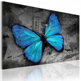 Tableau - Etude d'un papillon