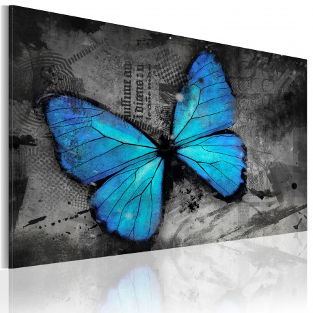 Tableau  Etude dun papillon