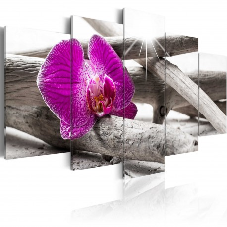 Tableau  Orchid on beach