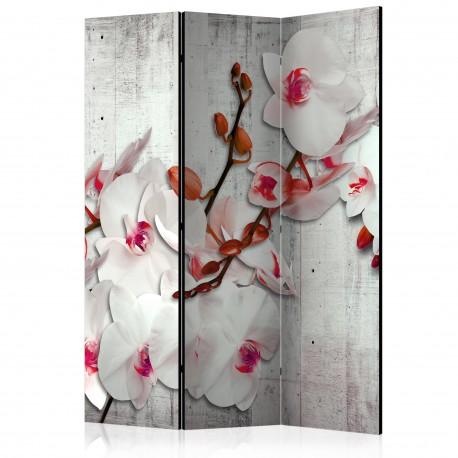 Paravent 3 volets  Concrete Orchid [Room Dividers]