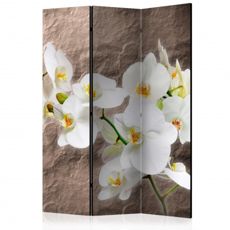 Paravent 3 volets  Impeccability of the Orchid [Room Dividers]