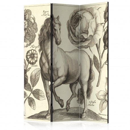 Paravent 3 volets  Horse [Room Dividers]