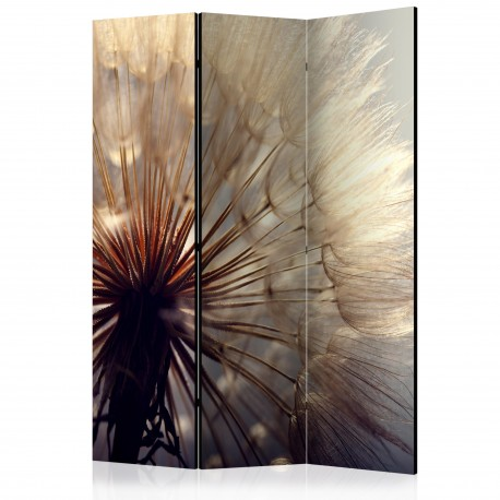 Paravent 3 volets  Dandelion Kiss [Room Dividers]