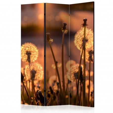 Paravent 3 volets  Farewell to Summer [Room Dividers]