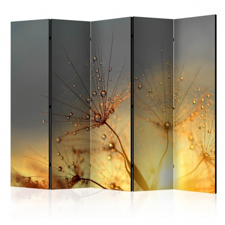 Paravent 5 volets  Summer Solstice II [Room Dividers]