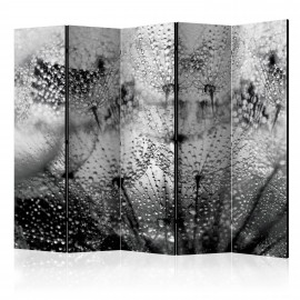 Paravent 5 volets - Kiss of the Rain II [Room Dividers]