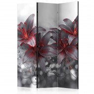 Paravent 3 volets  Shadow of Passion [Room Dividers]