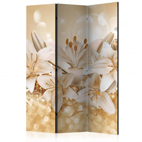 Paravent 3 volets  Royal Entourage [Room Dividers]