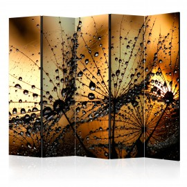 Paravent 5 volets - Dandelions in the Rain II [Room Dividers]