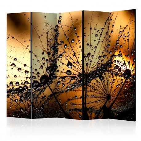 Paravent 5 volets  Dandelions in the Rain II [Room Dividers]