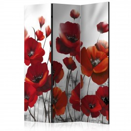 Paravent 3 volets - Poppies in the Moonlight [Room Dividers]