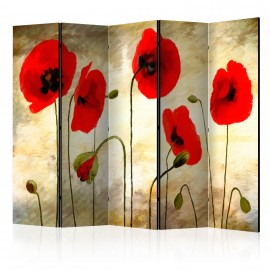 Paravent 5 volets - Golden Field of Poppies II [Room Dividers]