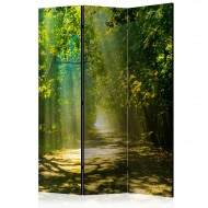 Paravent 3 volets  Road in Sunlight [Room Dividers]