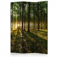 Paravent 3 volets  Morning in the Forest [Room Dividers]