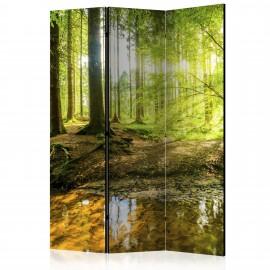 Paravent 3 volets - Forest Lake [Room Dividers]