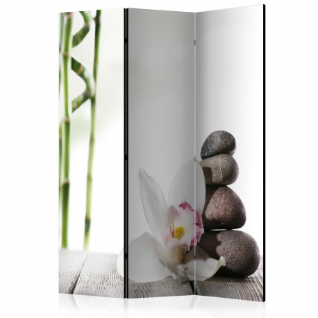 Paravent 3 volets  Harmony [Room Dividers]