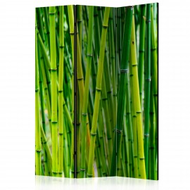Paravent 3 volets - Bamboo Forest [Room Dividers]