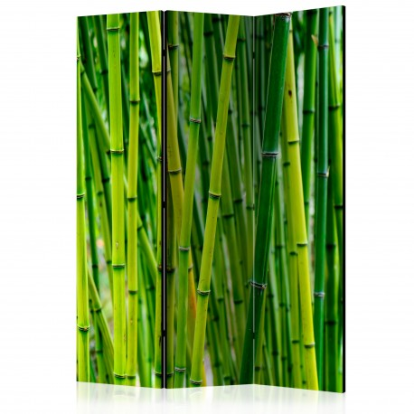 Paravent 3 volets  Bamboo Forest [Room Dividers]