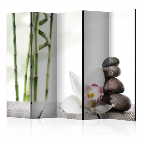 Paravent 5 volets  Harmony II [Room Dividers]