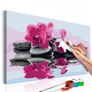 Tableau à peindre par soimême  Orchidée et pierres zen dans un mirroir deau