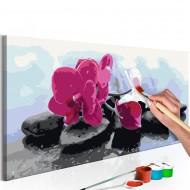 Tableau à peindre par soimême  Orchidée et pierres zen