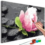 Tableau à peindre par soimême  Pink Flower and Stones