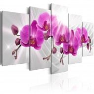 Tableau  Abstract Garden Pink Orchids